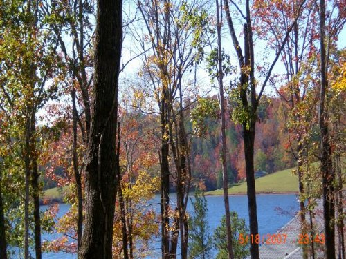 16+/- Ac Waterfront On Yates Lake : East Tallassee : Tallapoosa County : Alabama