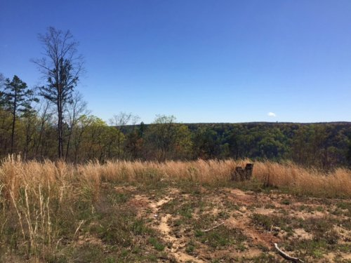 17.07+/- Acres Bluff View Property : Sequatchie : Marion County : Tennessee