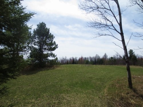 Lost Lake 12 Acres : Sugar Camp : Oneida County : Wisconsin