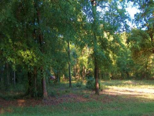 Beautiful Residential Home-site : Lake City : Columbia County : Florida
