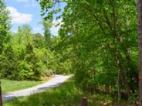 15 Acre Hardwood Estate Site