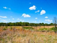 12 Acre Saddlebrook Ranch : Okemah : Okfuskee County : Oklahoma