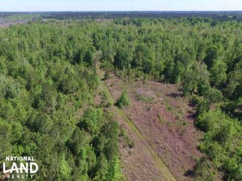 Buck Swamp Road Homesite : Brunswick : Glynn County : Georgia