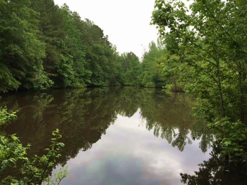 8 Ml Ac Homesite W/ Pond In Cabot : Cabot : Lonoke County : Arkansas
