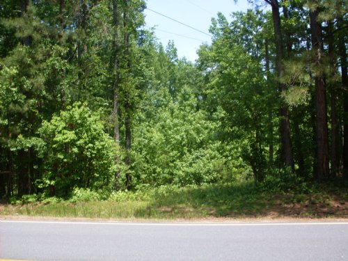 Witcher Road Parcel C : Newnan : Coweta County : Georgia