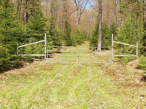20 Wooded Acres : Hazelhurst : Oneida County : Wisconsin