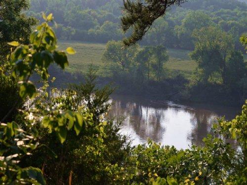 Building Lot W/ Vista & River Views : Mountain View : Stone County : Arkansas