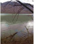 6.49+/- Acres Lake Front