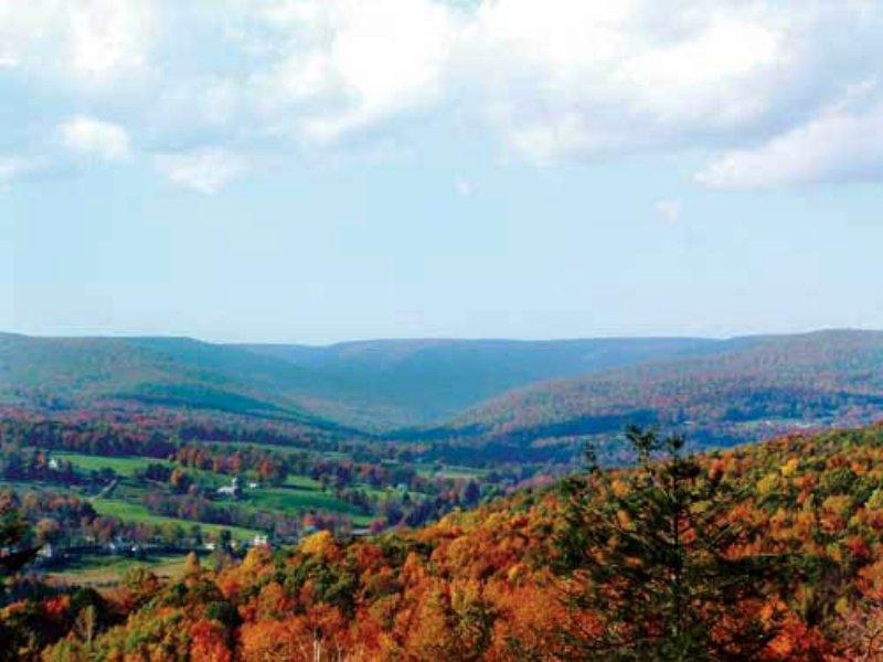 Poconos Land Liquidation Sale : Dallas : Luzerne County : Pennsylvania