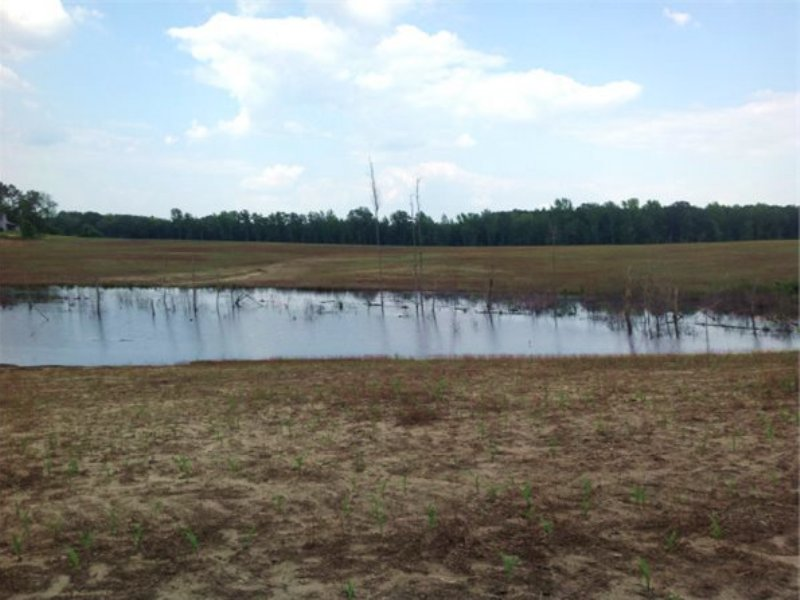 11.66 Acres In Chesterfield, Sc : Chesterfield : Chesterfield County : South Carolina