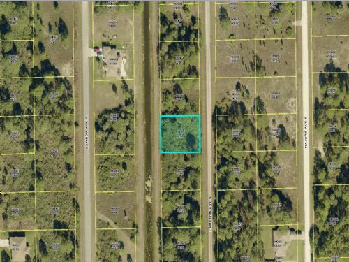 Gorgeous Lot In Ft Meyers : Lehigh Acres : Lee County : Florida
