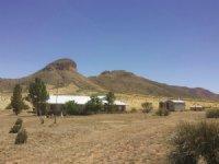 Arizona Ranch Auction