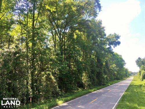 Crocketville Rural Lot : Crocketville : Hampton County : South Carolina
