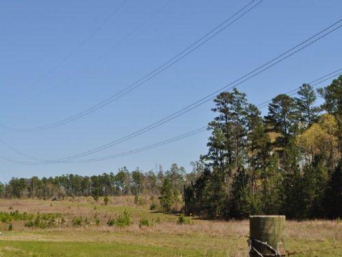 5 Acres Jordy Rd. : Huntsville : Walker County : Texas