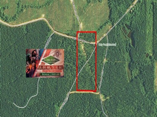 20 Ac - Pine Timberland With Home S : Joyce : Winn Parish : Louisiana