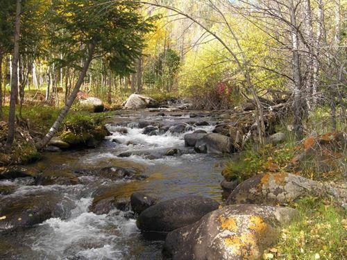 235063 A Great Colorado Fishing Pr : Salida : Chaffee County : Colorado