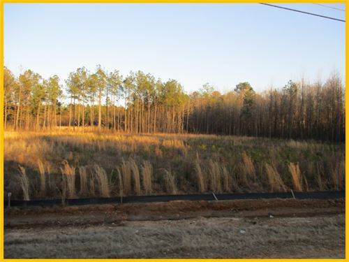 6.5 Acres In Webster County : Mathiston : Webster County : Mississippi