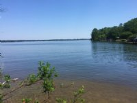0.42 Acres For Sale On Lake Murray : Gilbert : Lexington County : South Carolina