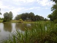 66-073 Prairie Bluff Lot : Camden : Wilcox County : Alabama