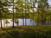 Smith Lake Waterfront Sale