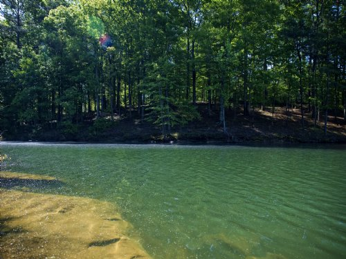 Waterfront Sale Smith Lake : Addison : Winston County : Alabama