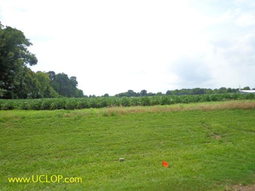 15+/- Acres Raw Commercial Land : Bunkie : Avoyelles Parish : Louisiana