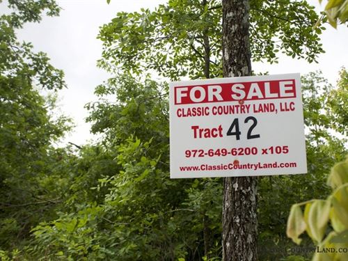 Thunder Mountain Ranch Tract 42 : Birch Tree : Shannon County : Missouri