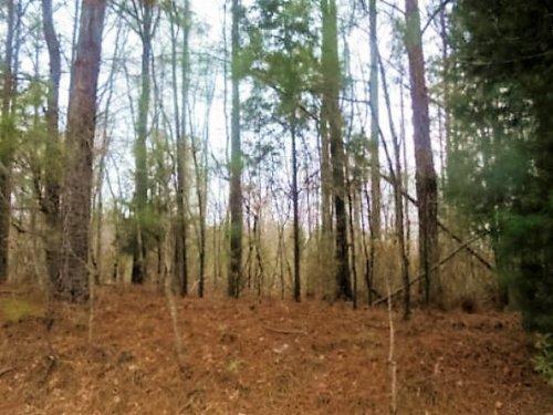 Reduced Tingle Road : Jackson : Butts County : Georgia