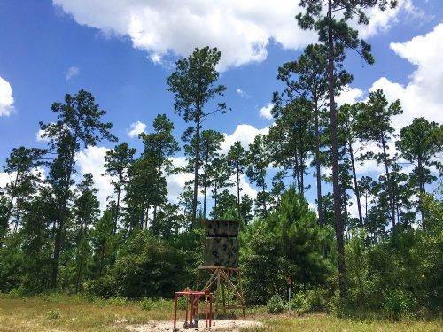 18 Acres Fm 1696 : Huntsville : Walker County : Texas