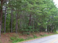 18.18 Acres Spartanburg District 2