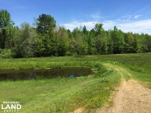 Cone Circle Homesite : Clanton : Chilton County : Alabama