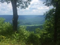7.3+/-acres Sweeping Bluff Views
