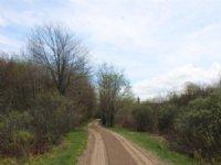 Land Near Mohawk Springs Forest