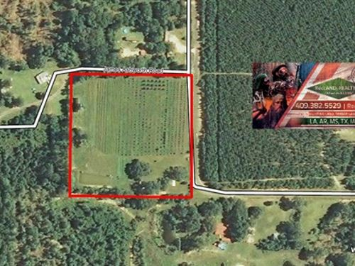 10 Ac - Certified Natural/Organic : Singer : Beauregard Parish : Louisiana