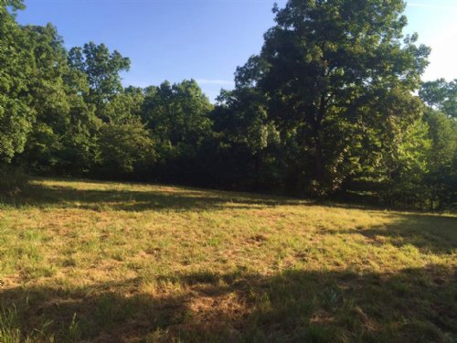 3.45 M/l Acres With A Small Cabin : Welling : Cherokee County : Oklahoma