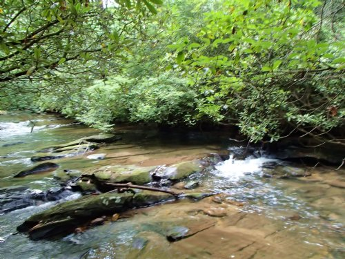 4ac On Trout Stream In Aska : Blue Ridge : Fannin County : Georgia