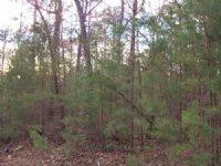 1.74 Acre Lot In Cartecay Ridge : Ellijay : Gilmer County : Georgia