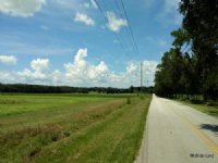 Meadow Ridge Ranches South #11