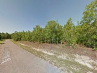 13 Lots Together For Sale