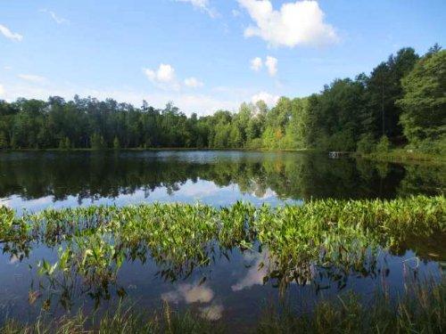 Mls 160130 - Fetke Lk : Newbold : Oneida County : Wisconsin