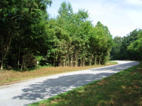 Buy To Build On : Rice : Prince Edward County : Virginia