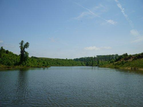 Farm Land Near Grandview : Grandview : Rhea County : Tennessee