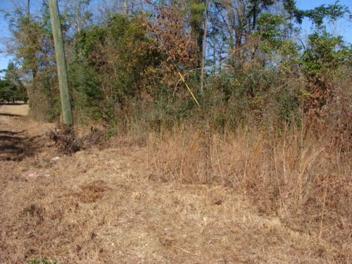 4.34 Ac Lot : Ruth : Pike County : Mississippi