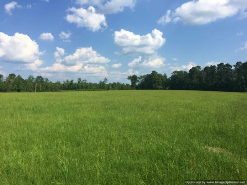Lot 5 - 2.7± Acres : Brookhaven : Lincoln County : Mississippi