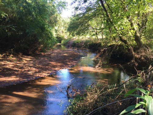 Beautiful Creek Lots : Forsyth : Monroe County : Georgia