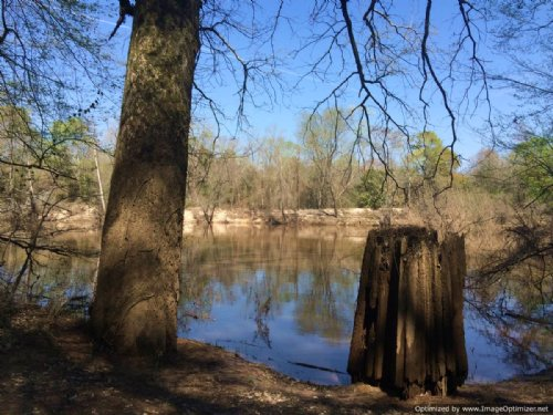 20± Hunting / Timberland : Carthage : Leake County : Mississippi
