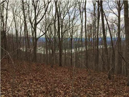 6.85+/- Acres Panoramic View : South Pittsburg : Marion County : Tennessee