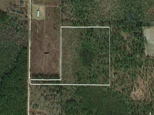 18.49 Acres O'berry Rd : Millwood : Ware County : Georgia