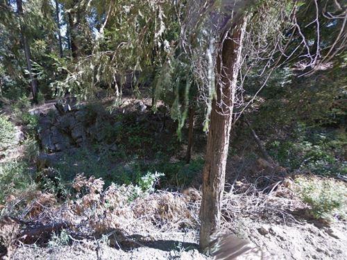 .11 Acres In Cedarpines Park, CA : Cedarpines Park : San Bernardino County : California