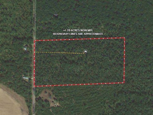 20 Acres Hunting / Buildable Land : Adams County : Wisconsin